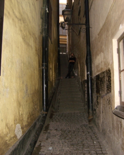 a Swedish Alley with a German in it